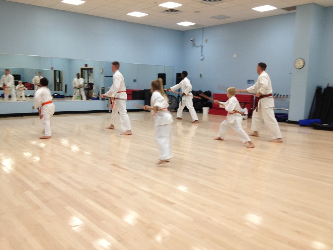 Photos The Karate Dojo